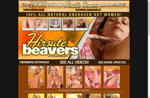 Hirsute Beavers