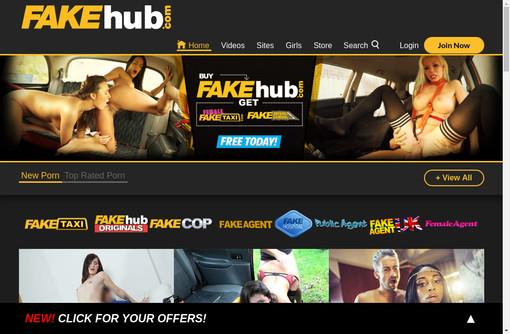 fake hub password recovery