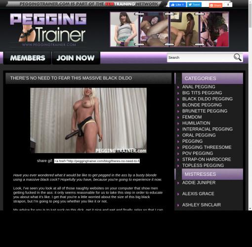pegging trainer